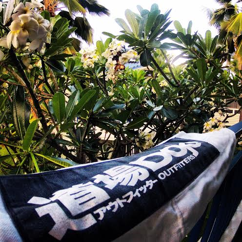 Dojo Outfitters and Plumerias
